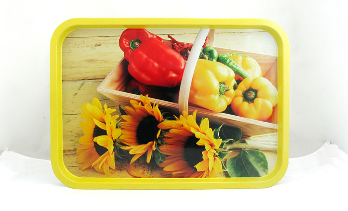 rectangular metal tin tray